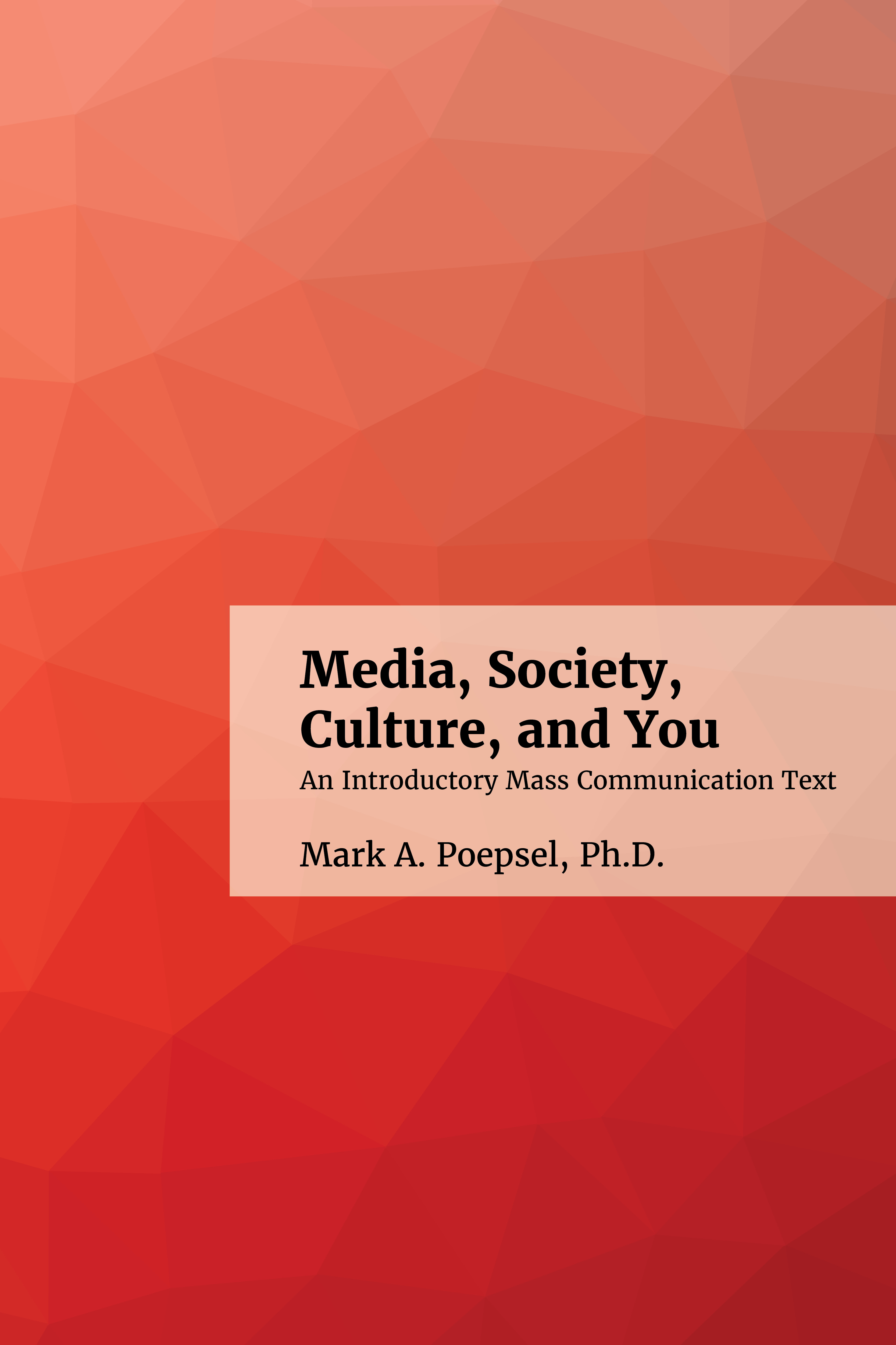 Cover image for Media, Society, Culture, and You