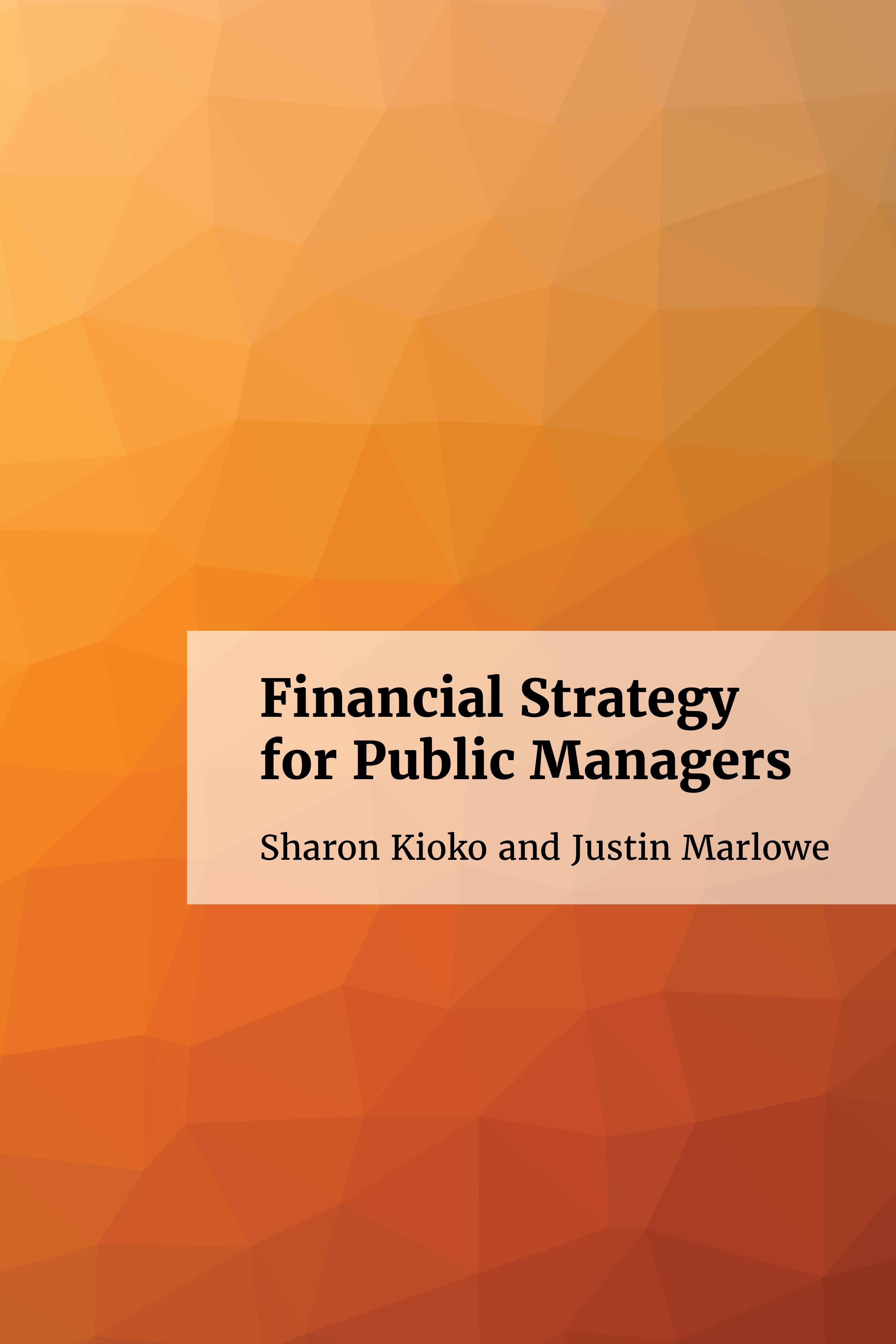 Financial Strategy For Public Managers Often If The Garbage Disposal Is 39hardwired39 Wiring Not Ebook Cover